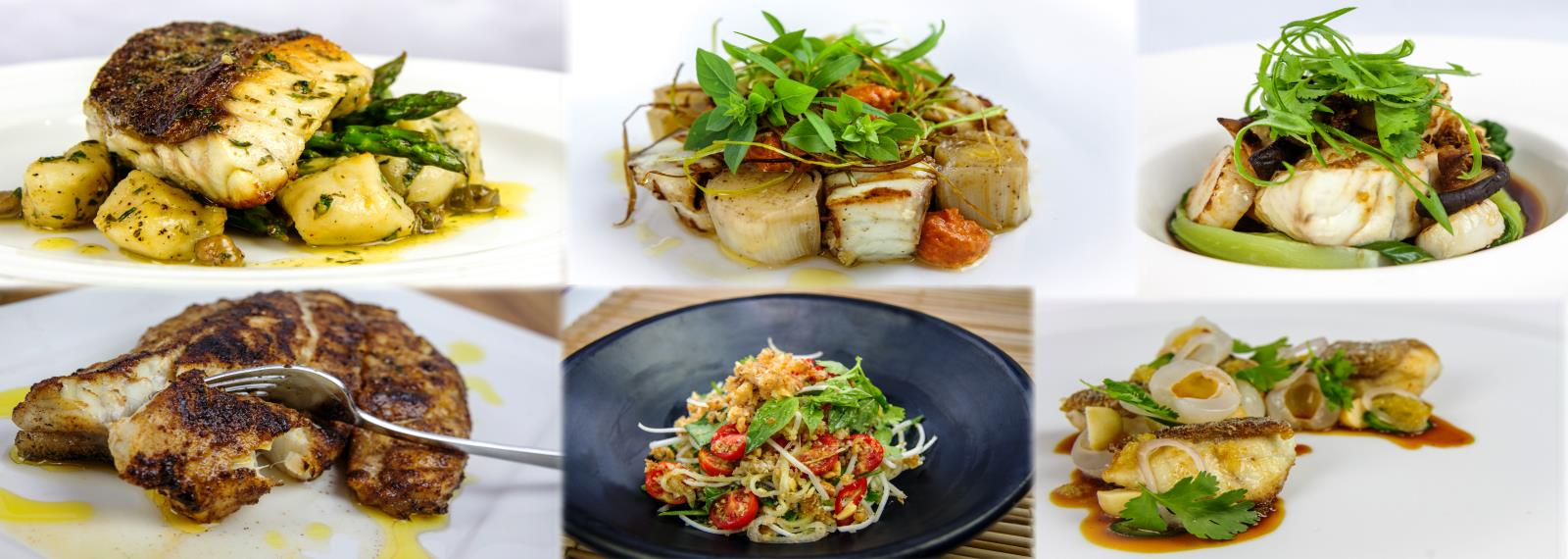 Slide-1-Grouped-plated-food-1600x570